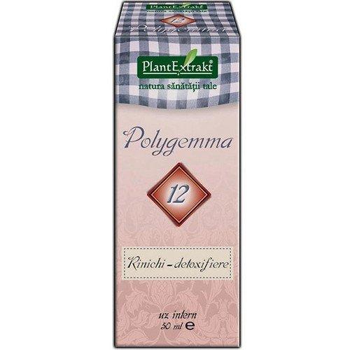 PlantExtrakt Polygemma 11 - ficat detoxifiere 50ml PLANTEXTRAKT